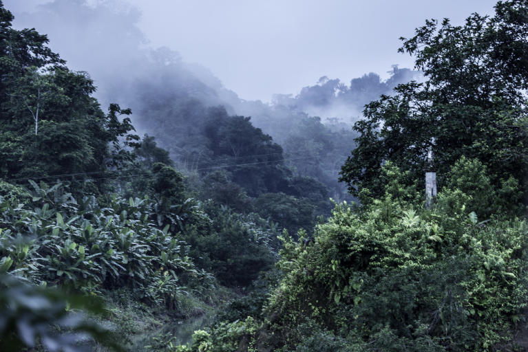 """In October 2017, more than 1,0000 people fled to the village of Catrú in Colombia's Chocó region.  """"They came because they feared that more people would be killed,"""" says one of the community leaders in Catrú, home to the indigenous Embera people.  The Pacific region, particularly Chocó, has become a battleground for clashes between the National Liberation Army (ELN) and another armed group. Indigenous and Afro-Colombian communities have been disproportionally affected. Seven out of ten people displaced this year come from these communities.  In many areas previously controlled by FARC, armed conflict is still ongoing. In some areas, the fighting has increased since FARC laid down their weapons, as armed groups are attempting to take control over strategic areas, natural resources and important drug routes. In many places, paramilitary groups have moved in, causing increased fear among the population. Violence has increased throughout the country, as has the number of local leaders being murdered. The Norwegian Refugee Council (NRC) has been present in Colombia since 1991. In Chocó, we inform indigenous groups about their rights and provide legal aid in questions relating to land rights and compensation after having been forced to flee. In Catrú we help make sure that children get to go to school, and provide clean water to the community. Photo: Ana Karina Delgado Diaz/NRC"""