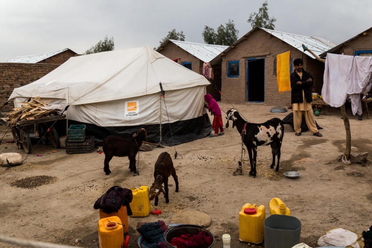 Shelters in Surkh Rod, Nangarhar, provided by NRC for the Khan family, who returned to Afghanistan recently from Pakistan after harassment from the authorities.  Nangarhar, February 2017  NRC/Jim Huylebroek