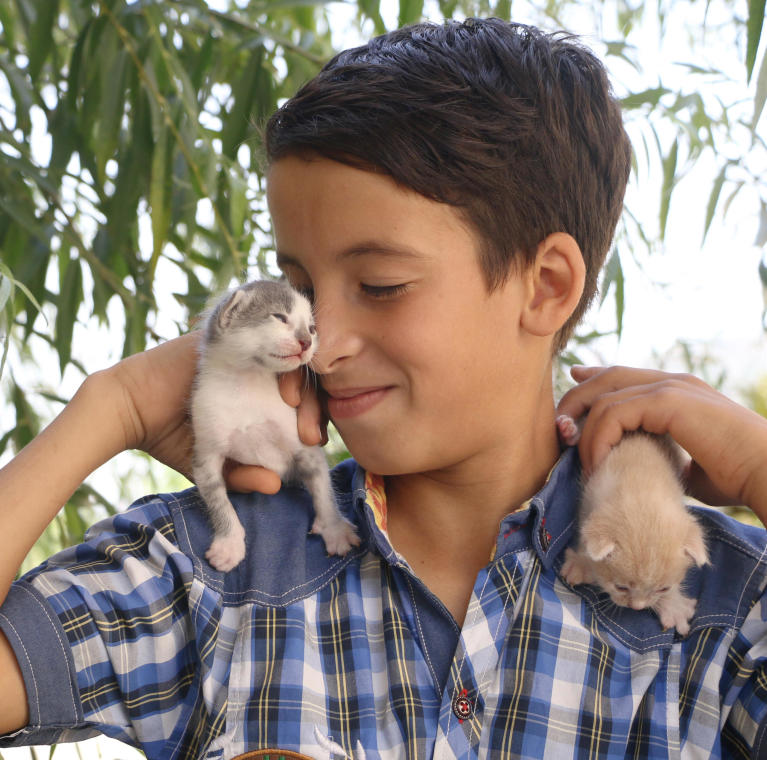 "*Ahmad, 10, A Syrian refugee in Lebanon. Cats' names: Zaynoun and Zannoun   ""I have two big cats, and five kittens, I raise them, and I worry a lot about them. Especially the mother because she breastfeeds her kittens. So, she feels hungry very fast. I feed her and give her water. Whenever I find a cat on my way, I feed her and pet her.  When I wake up, they run toward me, so I feed them and pet them, I love taking care of them.  When I come back from school, they wait for me on the door, and walk between my legs.""  Photo: Nadine Malli/NRC"